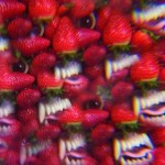 Thee Oh Sees / Floating Coffin