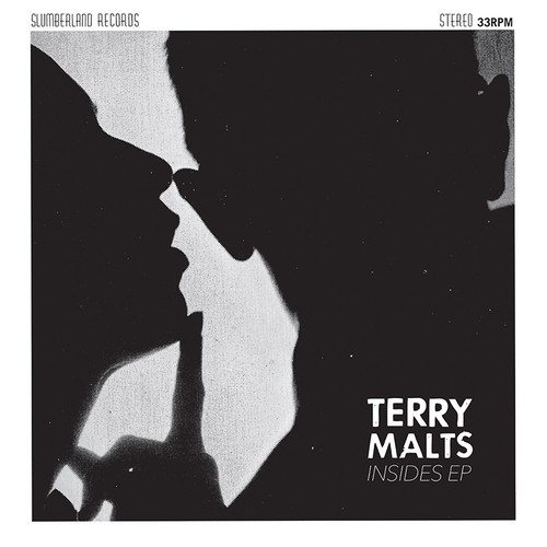 Terry Malts / Insides EP